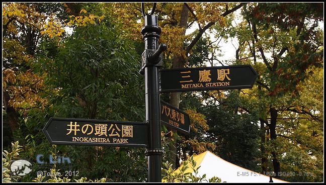 日本單身行第五日之1-049