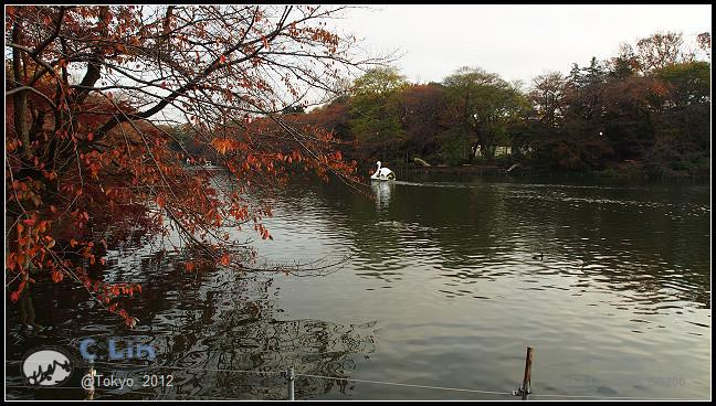 日本單身行第五日之2-043