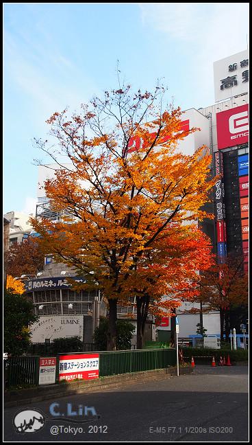 日本單身行第六日之1-010
