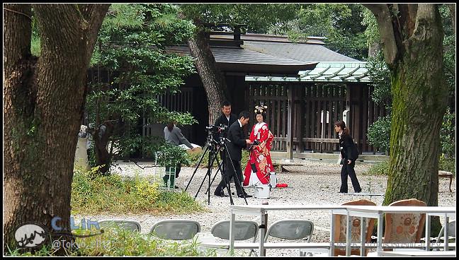 日本單身行第七日之1-037