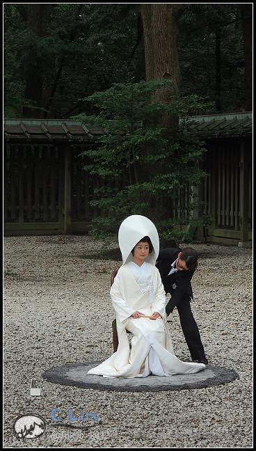 日本單身行第七日之1-049