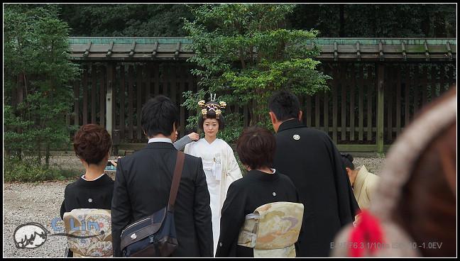 日本單身行第七日之1-041