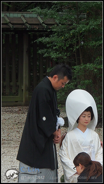 日本單身行第七日之1-050