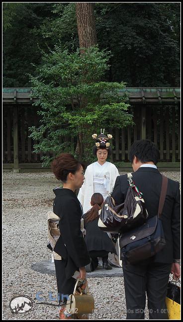 日本單身行第七日之1-044