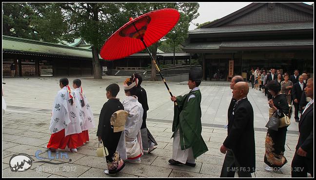 日本單身行第七日之1-081