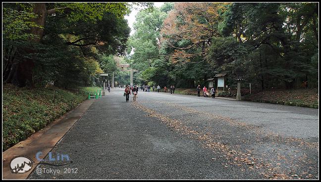 日本單身行第七日之1-083