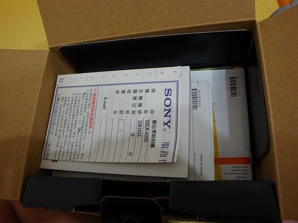 DSC00282_resize.JPG