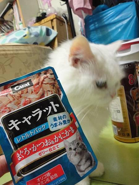 102.02.13日本貓餐包