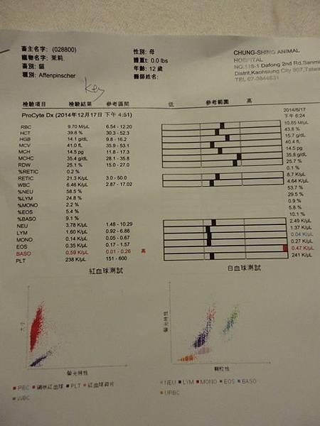 103.12.17茉莉健檢-脾臟長5顆東西