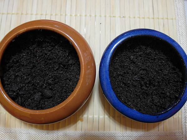 103.10.27大麥草種子2d