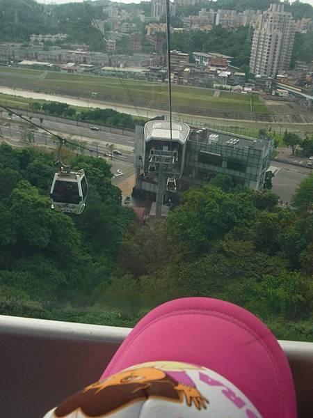 0502台北動物園 042.jpg