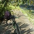 20130215-1216 集集騎腳踏車156 .JPG