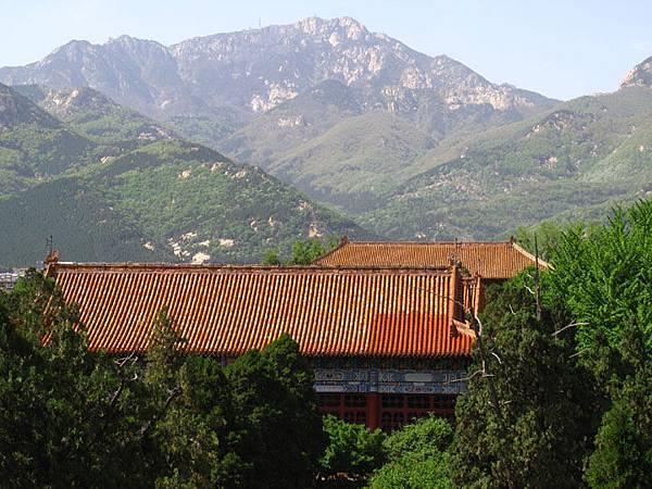 Taishan 36a