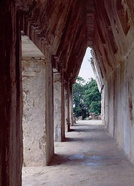 palenque 11