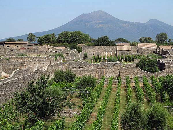 pompeii h1