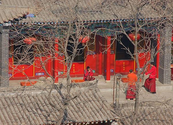 Lanzhou 12