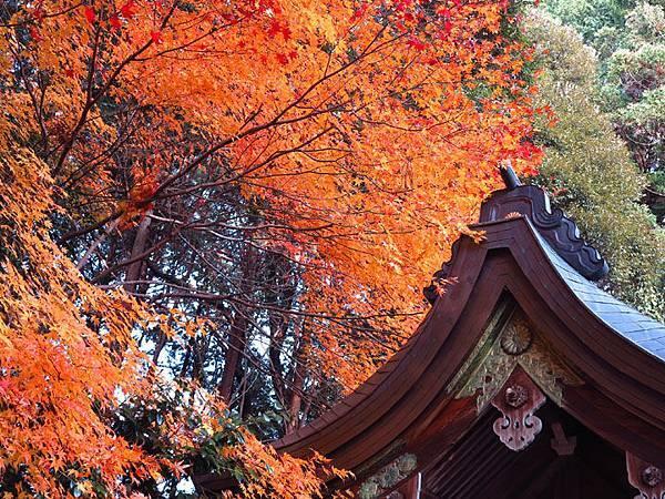 Kyoto 1d16.JPG