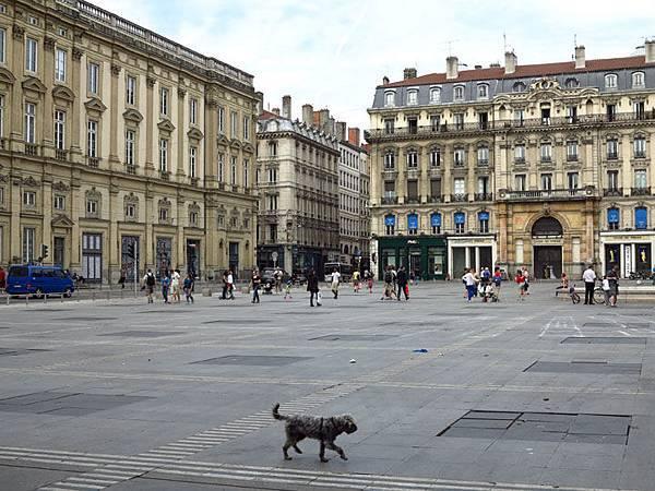 Lyon a2.JPG