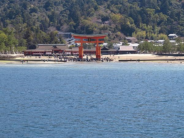 Miyajima a1.JPG