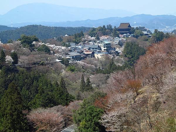 Nara f8.JPG