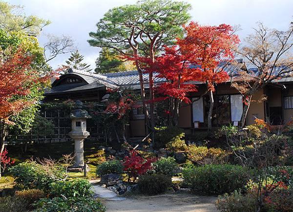 Nara m3.JPG