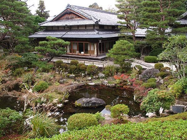 Nara n1.JPG