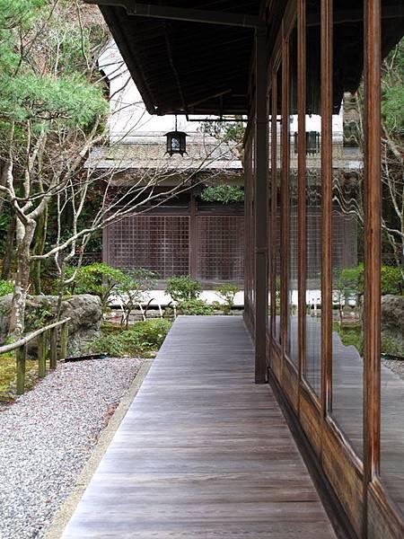 Nara n3.JPG