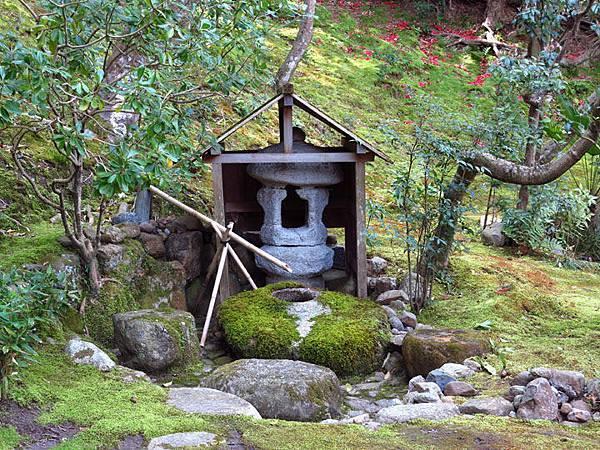 Nara n11.JPG
