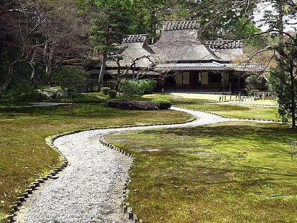 Nara n13.JPG