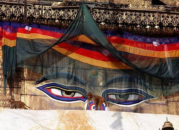 Nepal a4.jpg