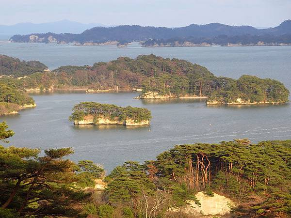 Matsushima a1.JPG