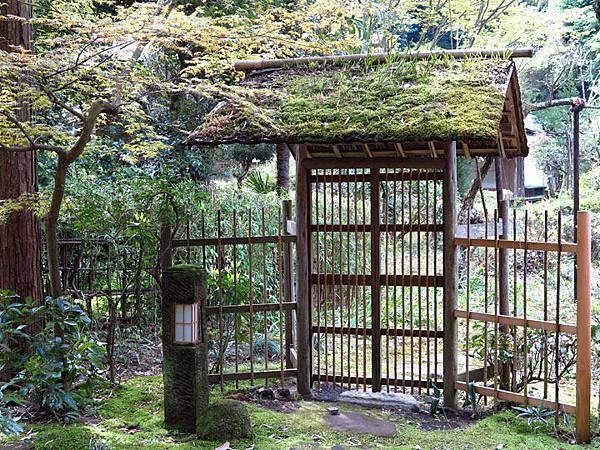 Kamakura d2.JPG