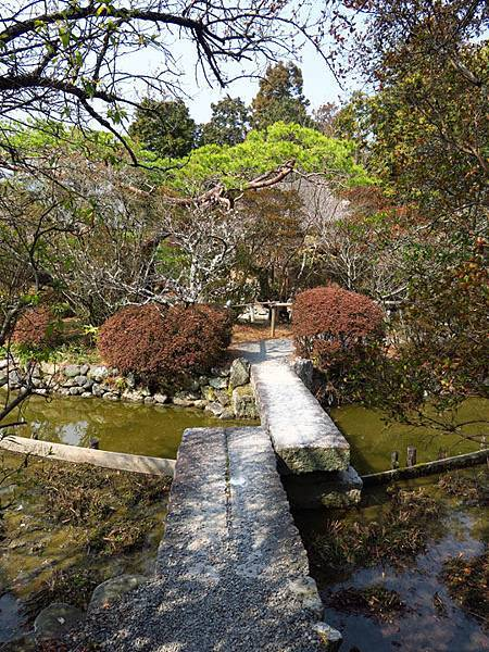 Kyoto 8b6.JPG