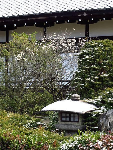 Kyoto 9b7.JPG