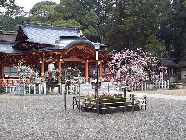 Kyoto 11a1.JPG