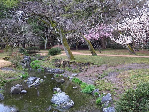 Kyoto 11c1.JPG