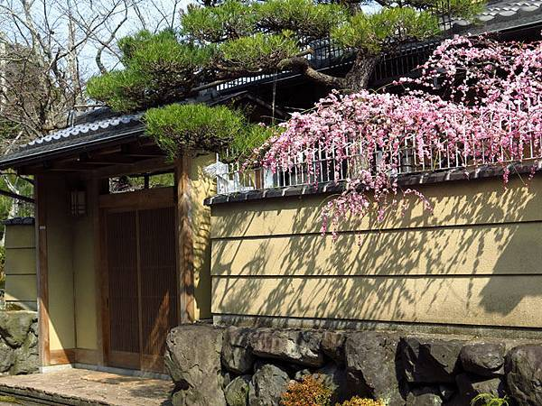 Kyoto 11d1.JPG