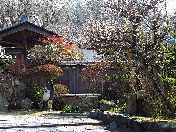 Kyoto 11d4.JPG