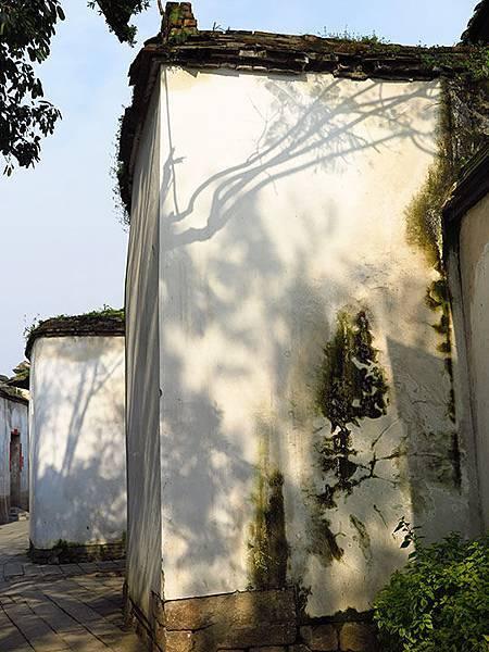 fuzhou y2