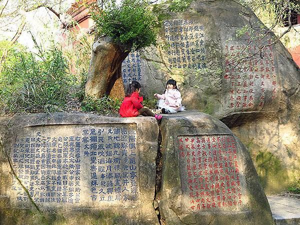 fuzhou z1