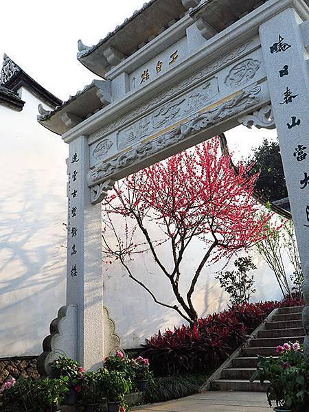 fuzhou z5