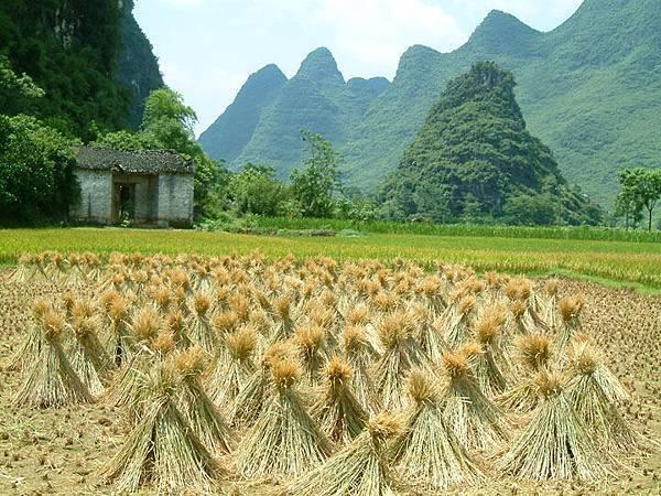 Yangshuo b4.jpg