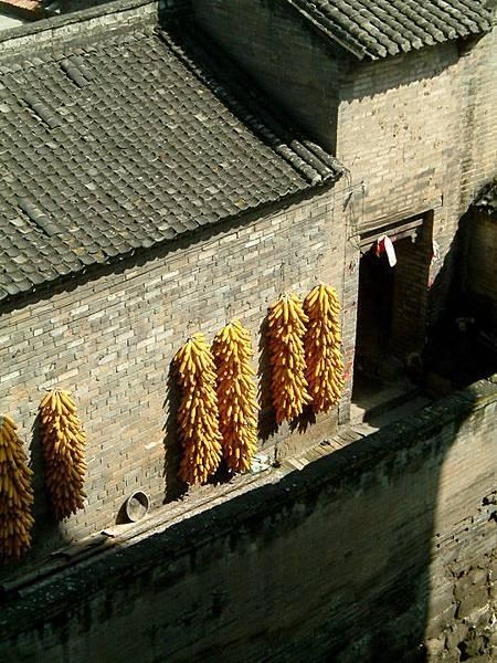 Guoyu b4.jpg
