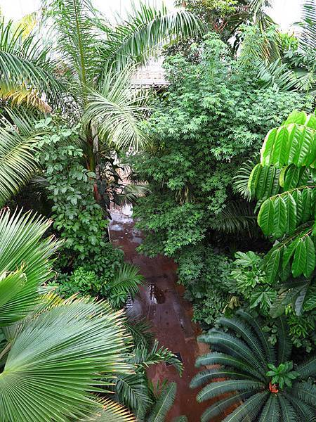 Kew 4.JPG