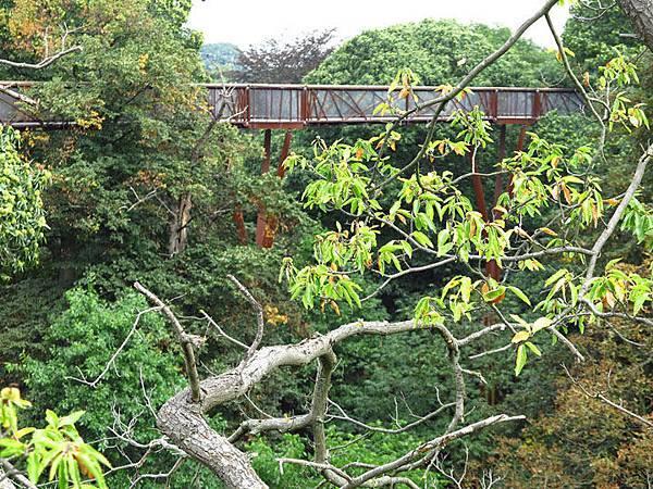 Kew b1.JPG