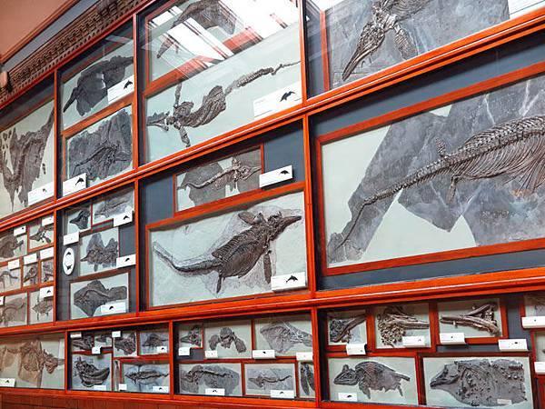 Museum c1.JPG