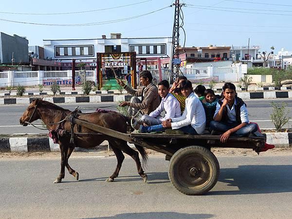 Rajasthan d3.JPG