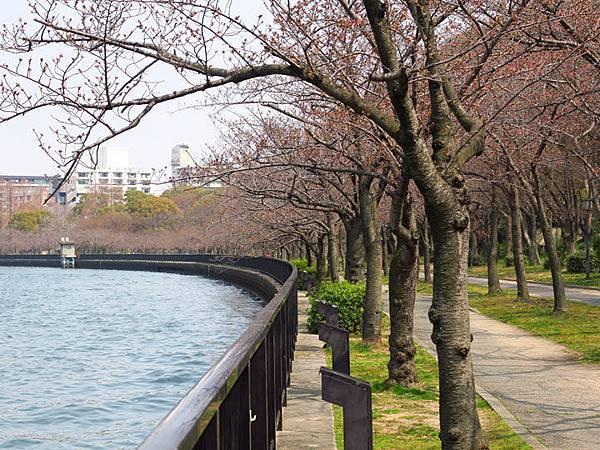 Kyoto aw1.JPG