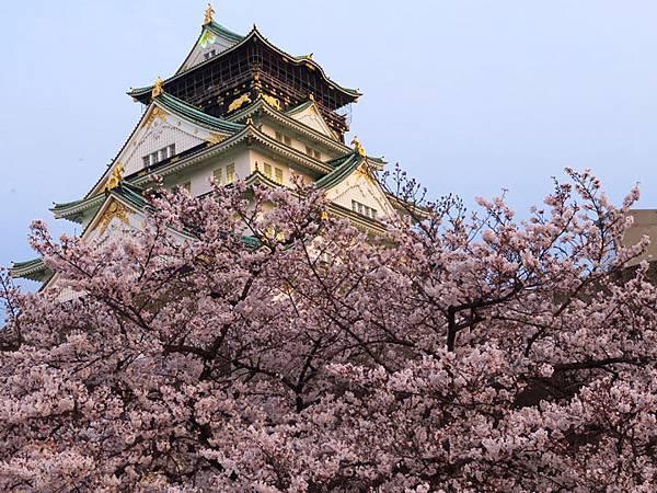 Kyoto aw7.JPG