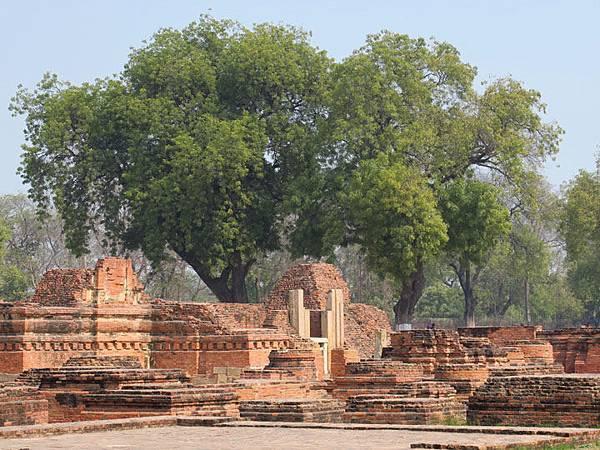 Sarnath a2.JPG
